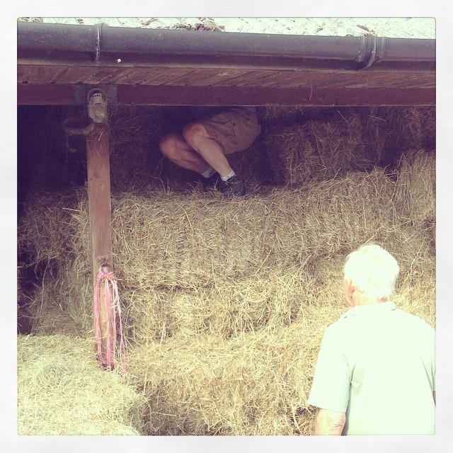 Both of us enjoyed helping with the hay on the farm today #lowerhooknerfarm