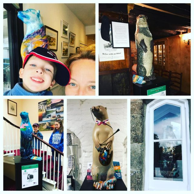 Another reason to lovedartmoor We are collecting moorotters