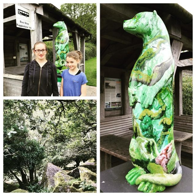 Hunting down the MoorOtters made the holiday this year especiallyhellip