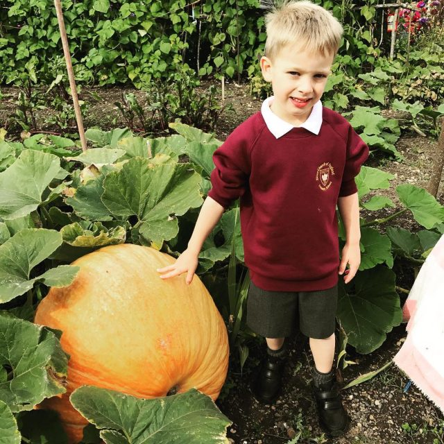 Mr W sure knows how to grow a pumpkin!